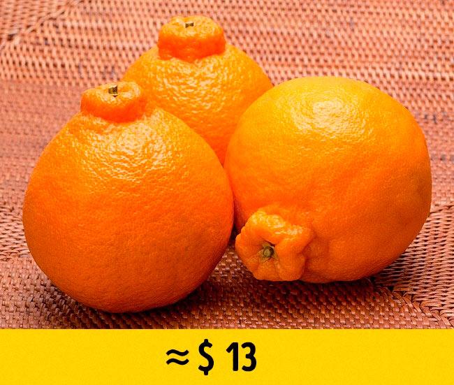 10 редких фруктов, которые стоят возмутительно дорого декопон decopon sumo fruit