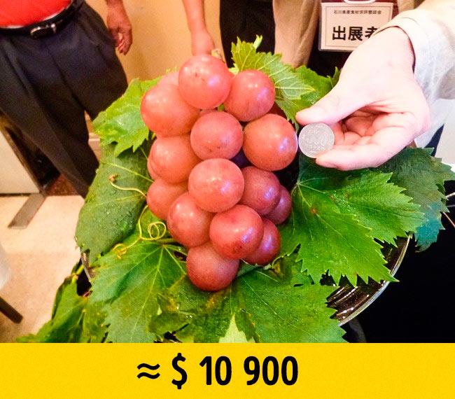 10 редких фруктов, которые стоят возмутительно дорого Виноград Ruby Roman grapes ruby roman