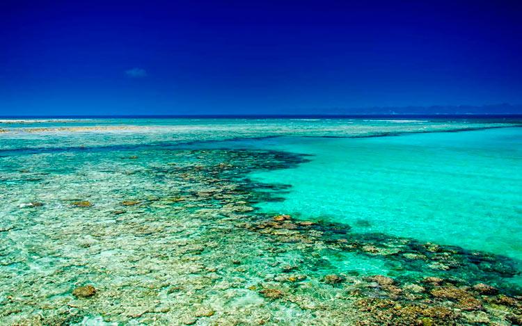 13 мест с самой красивой водой на планете Остров Хейвлок Индия havelock