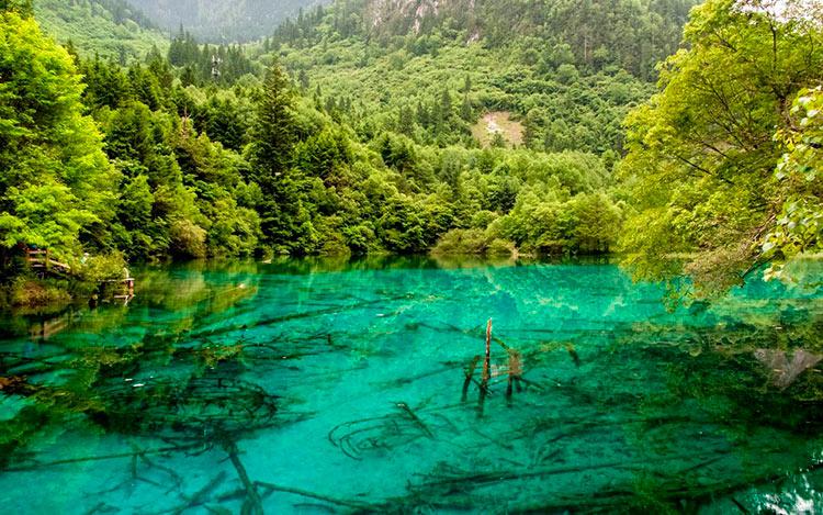 13 мест с самой красивой водой на планете Озеро Пяти Цветков Цзючжайгоу Китай jiuzhaigou