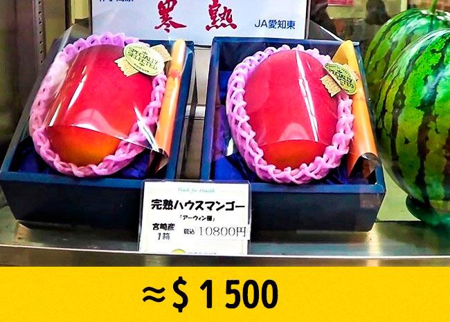 10 редких фруктов, которые стоят возмутительно дорого Манго «яйцо солнца» mango egg of sun