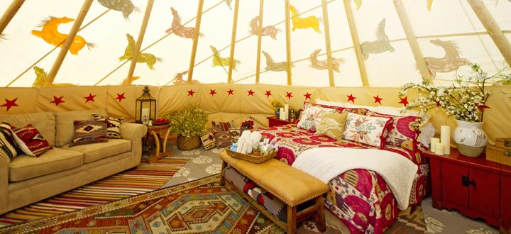 дорогие роскошные бордели Mustang Ranch Resort Невада США brothel