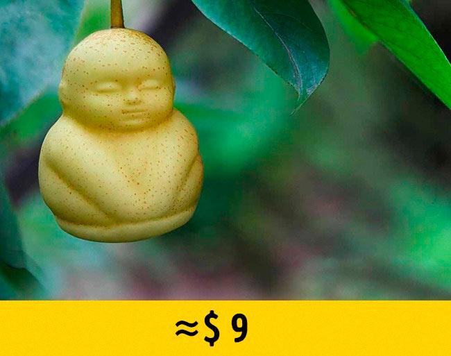 10 редких фруктов, которые стоят возмутительно дорого груши в форме будды pear