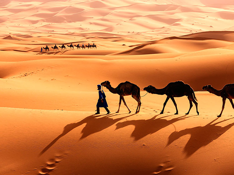 прекрасное Марокко Волшебная Сахара beautiful Morocco