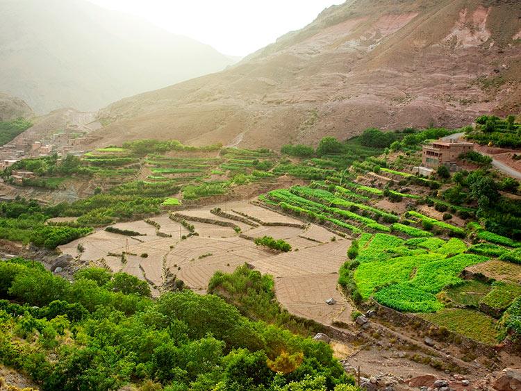 прекрасное Марокко Террасы города Имлиль у подножия Атласских гор beautiful Morocco