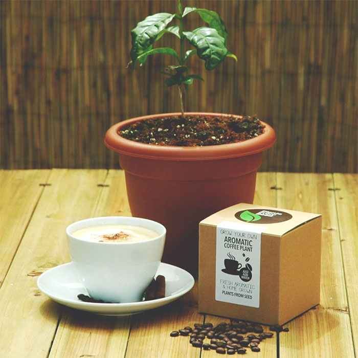 Подарки для любителей кофе