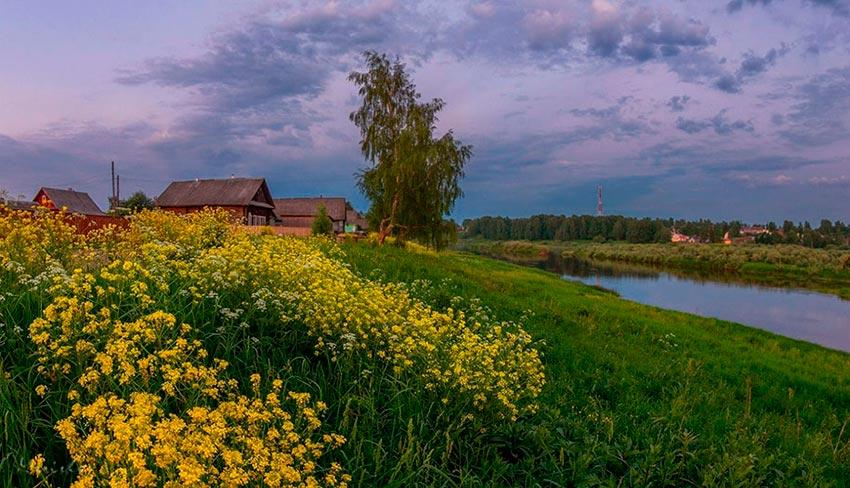 Великолепные сельские пейзажи Марина Мурашова Marina Murashova