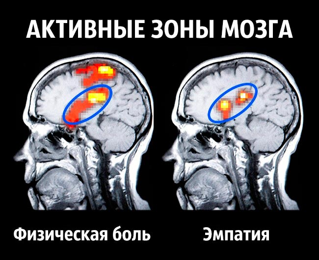 becomt happy 4 - Советы нейробиолога как стать счастливым раз и навсегда