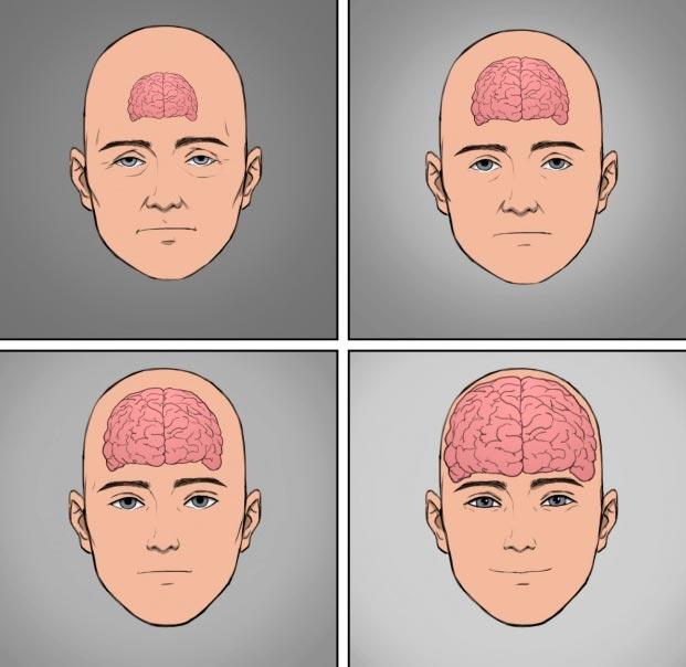 becomt happy 5 - Советы нейробиолога как стать счастливым раз и навсегда