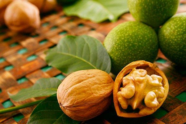Полезные продукты для мозга Грецкие орехи