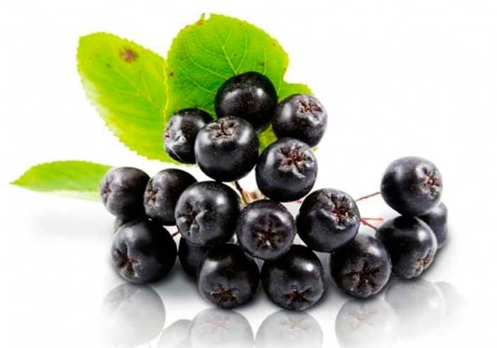 5 продуктов, для нормализации повышенного давления Черноплодная рябина
