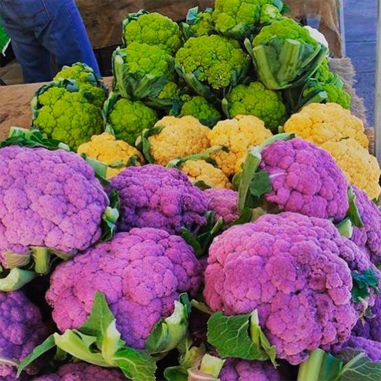Овощи, которые похожи на находки с другой планеты Разноцветная цветная капуста