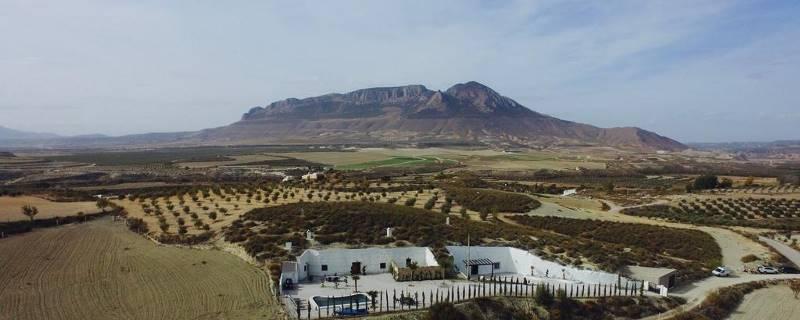 Пара превратила испанские пещеры в отель мечты