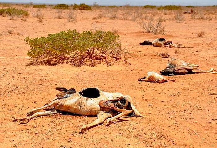 Самые опасные места на Земле Регион Сахель