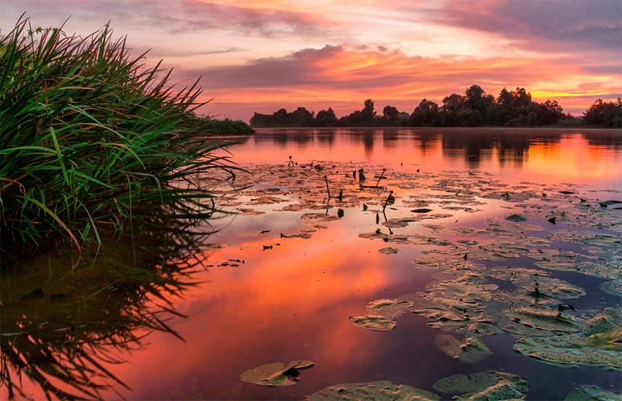 Природа подмосковья в прекрасных фото