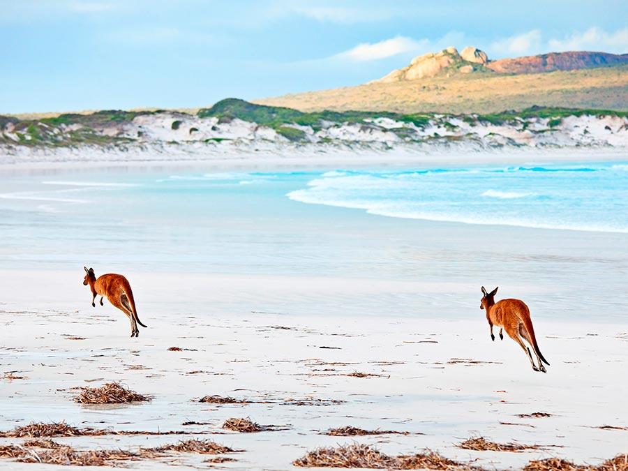 Восхитительная красота Австралии Национальный парк Кейп Ле Гранд, Западная Австралия
