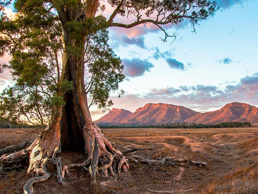 Восхитительная красота Австралии Горы Флиндерс, Южная Австралия
