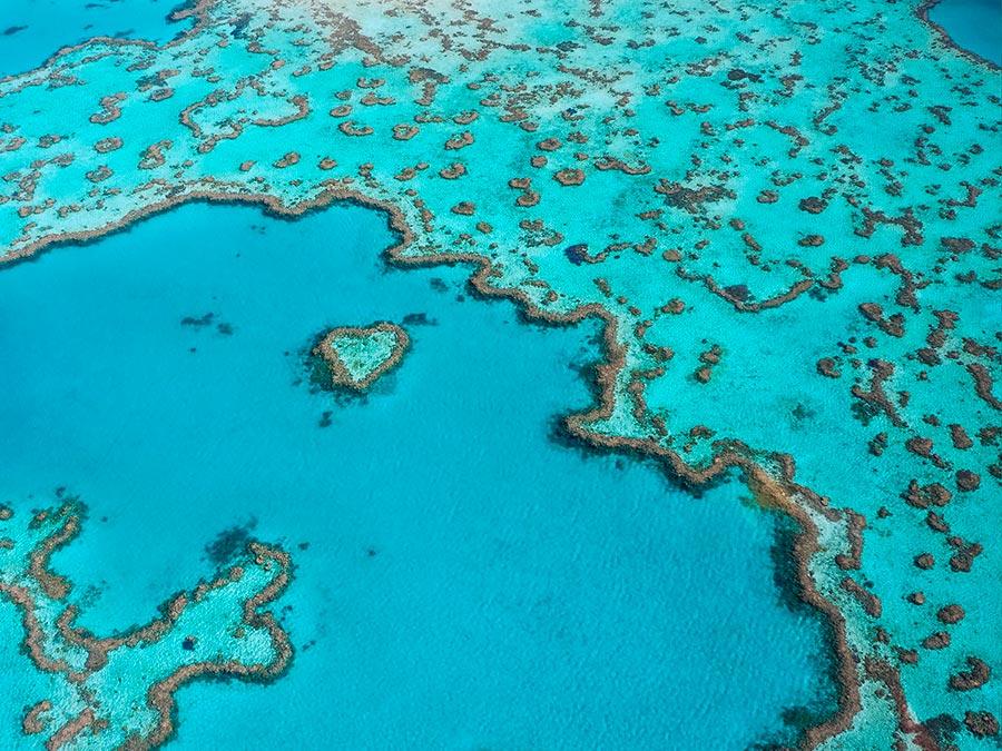 Восхитительная красота Австралии Большой Барьерный риф, Квинсленд