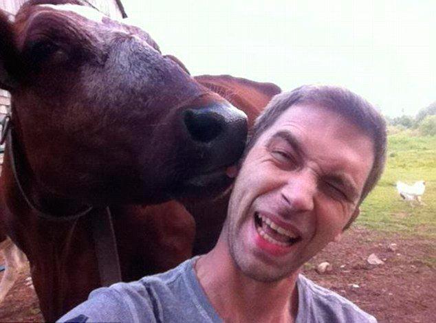 Забавные и пугающие встречи человека и животного