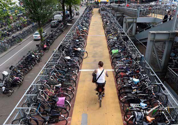 Нидерланды: удивительные факты