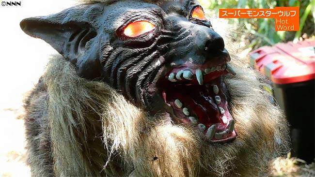 Крутой монстр волк Super Monster Wolf создан напугать диких животных сельхозугодиях