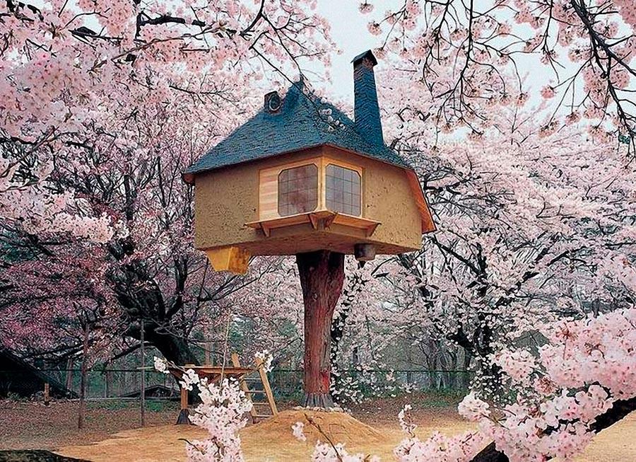 Самые оригинальные дома в мире Чайный домик Tetsu в Японии