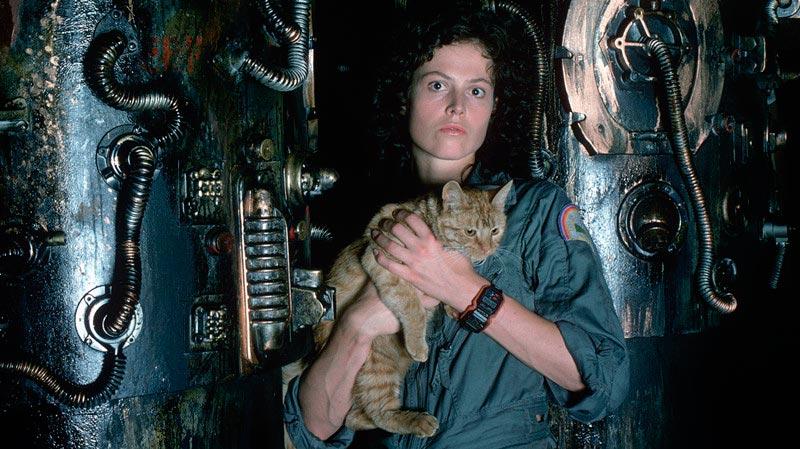 Межзвёздные приключения шедевры космического кино Чужой Alien
