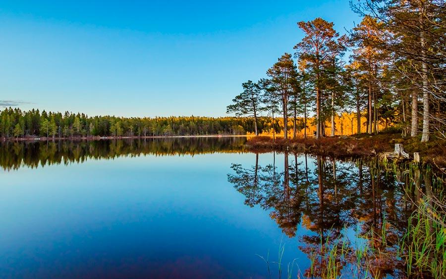 Torsten Muehlbacher Пейзажи отраженные в воде