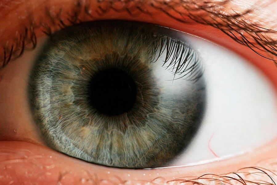 метод создания живой сетчатки глаза при помощи 3D-печати
