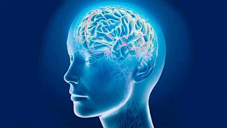 neural networs reads minds нейросеть читает мысли