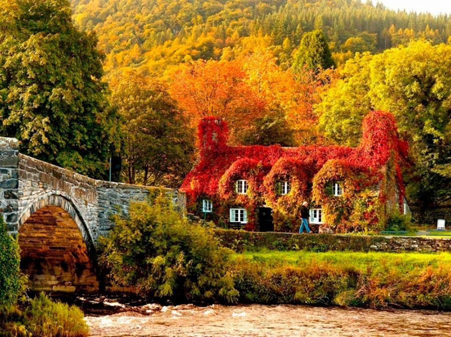Где осень выглядит великолепно Уэльс
