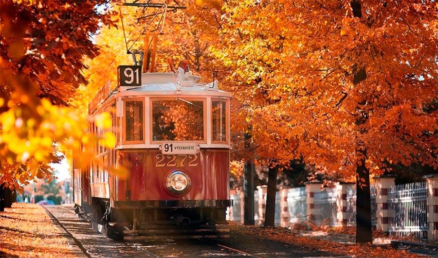 Где осень выглядит великолепно Прага Чехия