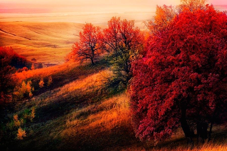 Где осень выглядит великолепно Татарстан Россия