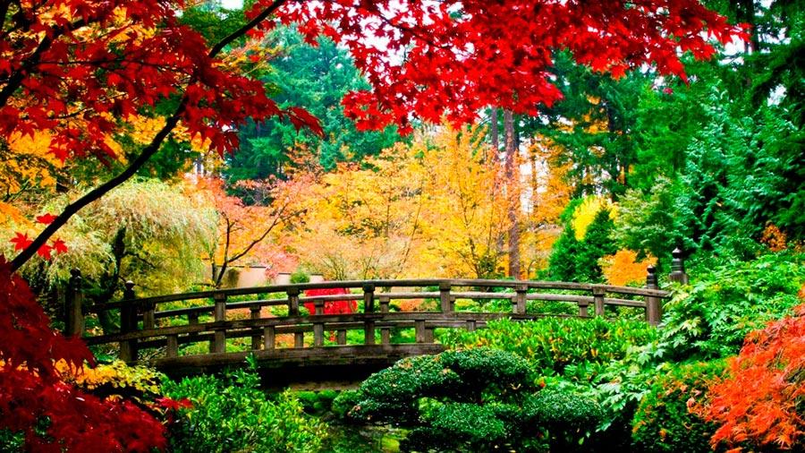 Где осень выглядит великолепно Китай