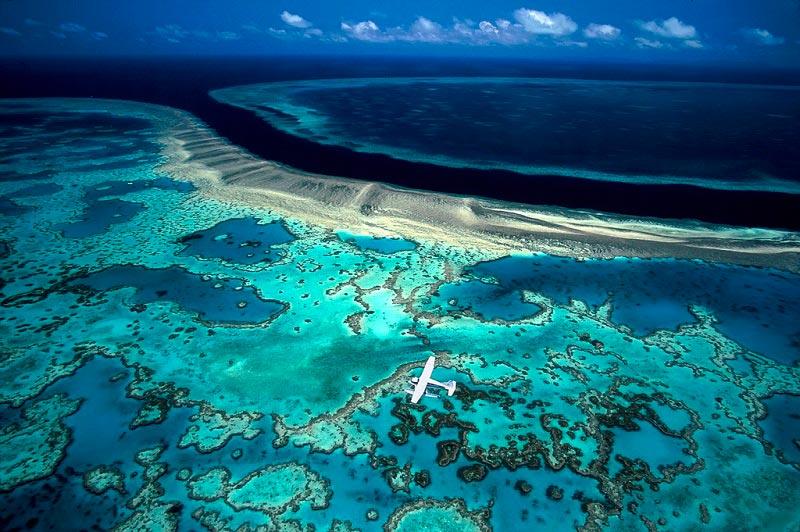 Места на Земле могут исчезнут Большой Барьерный риф