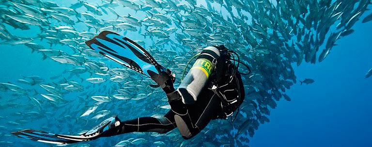 популярные виды спорта на воде Скуба-дайвинг
