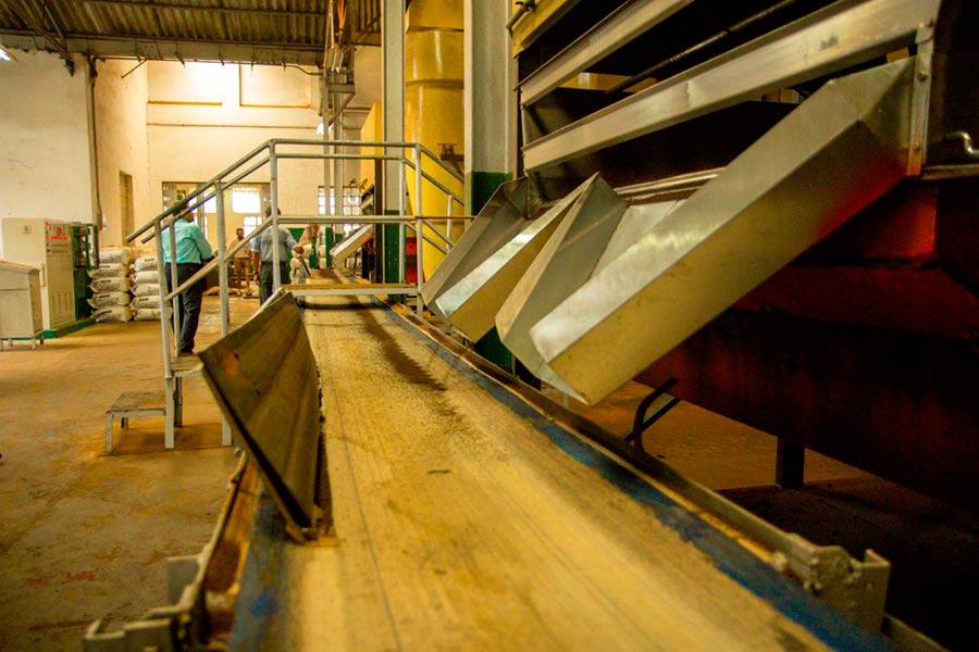 Производство гранулированного чая в Индии India Kurti