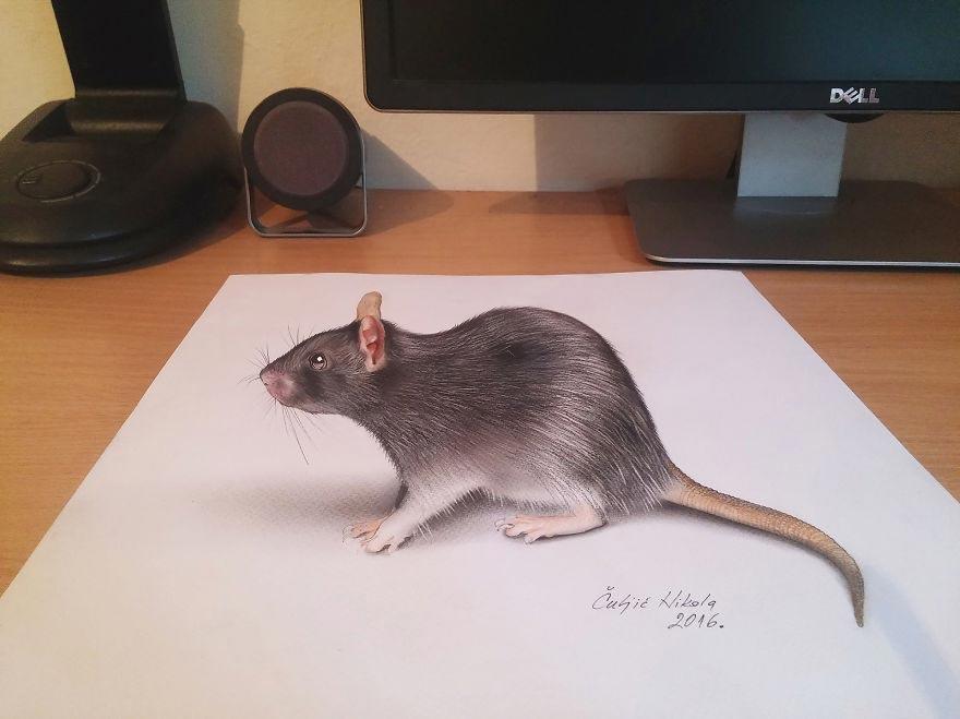 Крутые реалистичные 3D рисунки Крыса