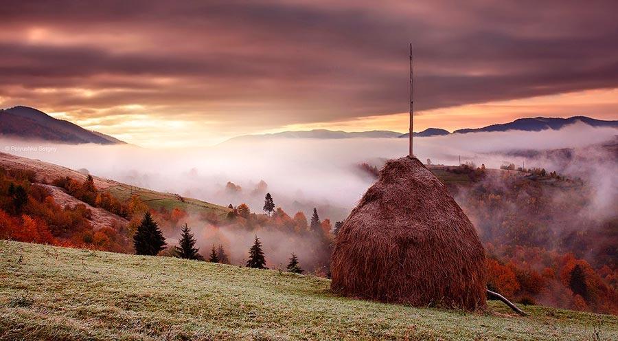 Осень на снимках Сергея Полюшко