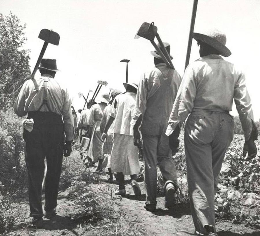 Грустная правда о жизни американских рабов Кларксдейл, Миссисипи