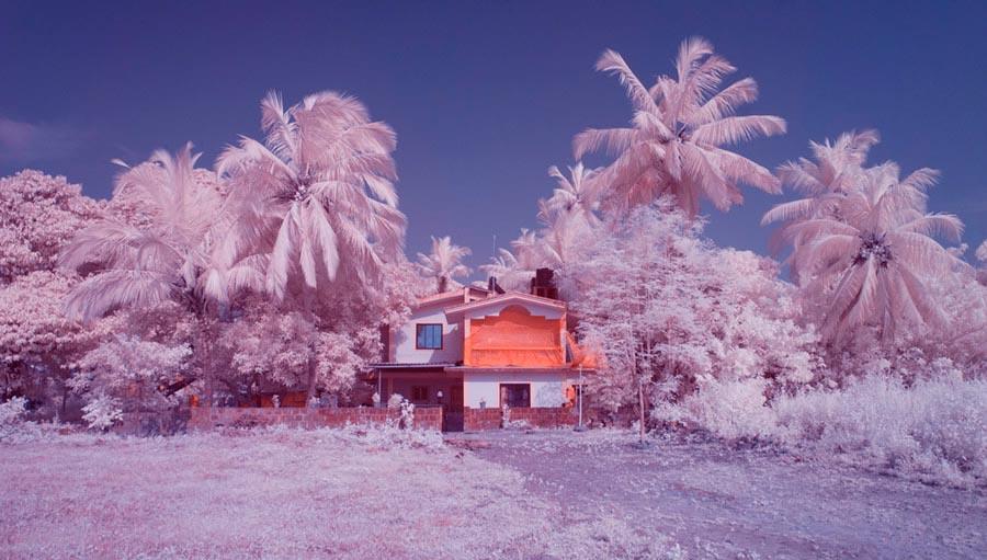 инфракрасный Гоа infrared Goa