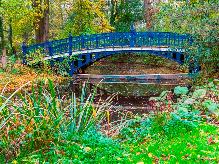 городской парк city park Парк Вондела Амстердам Нидерланды Vondelpark Amsterdam Netherlands