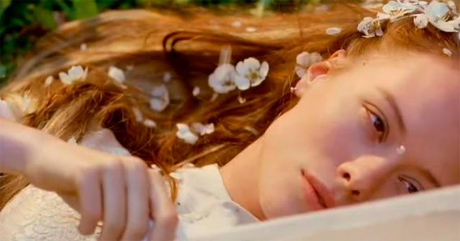 Фильмы, которые заставят время остановиться Букет Kytice