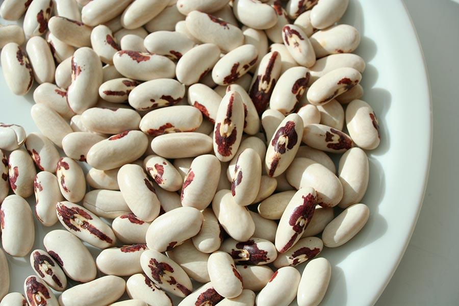 Натуральные жиросжигатели natural fat burners Бобовые legumes
