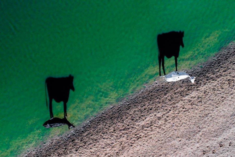 фотографии сделанные дронами photos taken by drones Творчество