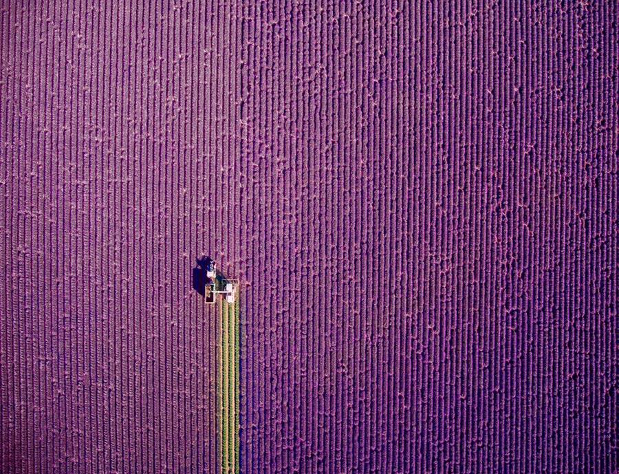 фотографии сделанные дронами photos taken by drones jcourtial Прованс летняя уборка