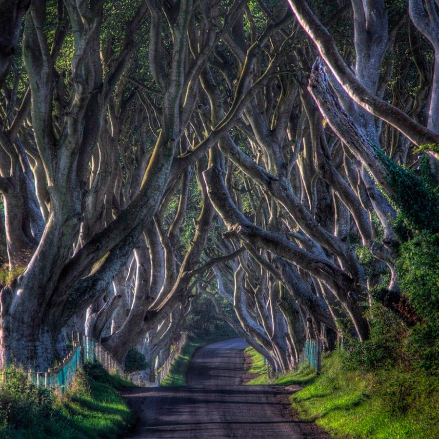 места на Земле Мрачная аллея Ирландия Ireland