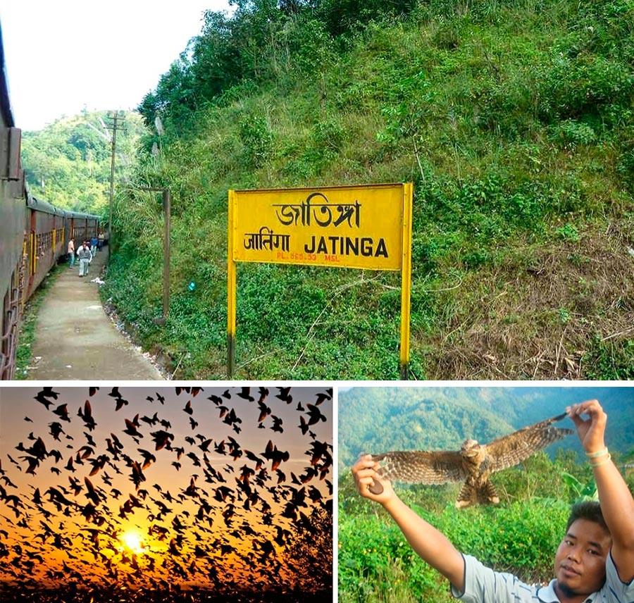 Чудеса природы wonders of nature Долина падающих птиц