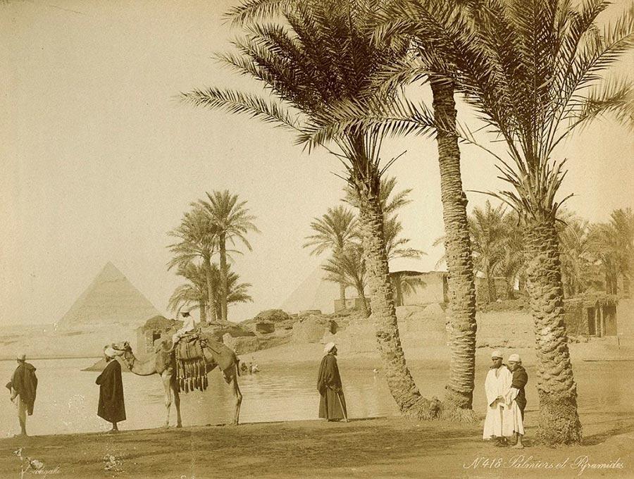 Adelphoi Zangaki Братья Зангаки Древние чудеса Египта ancient wonders of Egypt Пальмовая роща возле пирамид