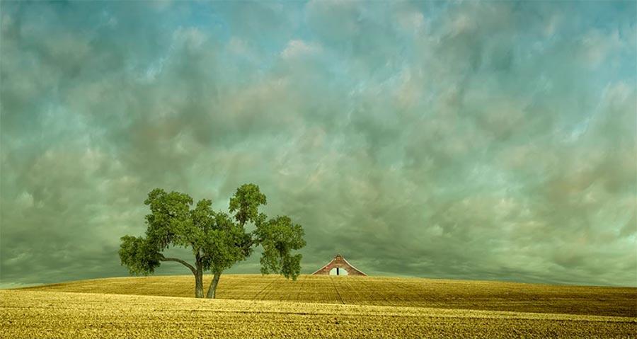 Lisa Wood Лиза Вуд ландшафты в фотографиях